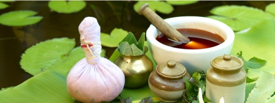 The art of ayurvedic treatment 01
