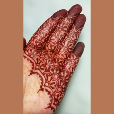 mehendi designs by Nurie 12