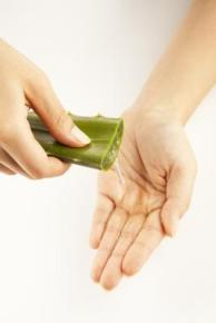 Aloe Vera Benefits For Health and Beauty 05