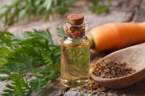 Essential Oils for Dry Skin 02