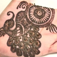 Pretty mehndi designs 09