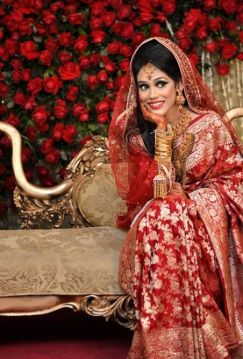 Indian wedding saree 02
