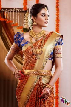 Indian wedding saree 03